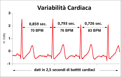 Variabilita-cardiaca